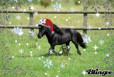 Watch and share Santa's Pet Miniature Horse GIFs on Gfycat