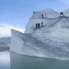 surf, surfing, Surfing down an iceberg. GIFs