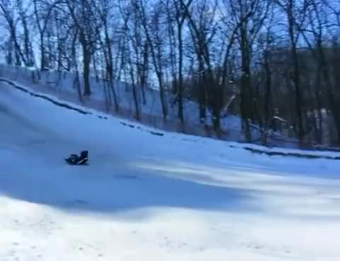 Watch and share Sledding GIFs on Gfycat