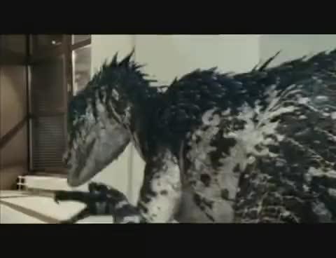 Watch and share Raptor GIFs on Gfycat