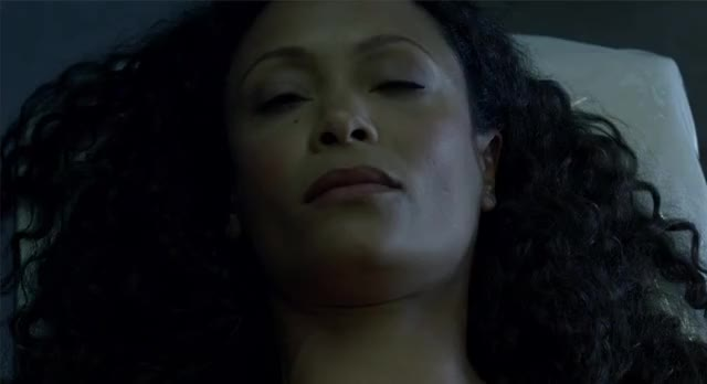 Watch and share Thandie Newton GIFs and Westworld GIFs by Ricky Bobby on Gfycat