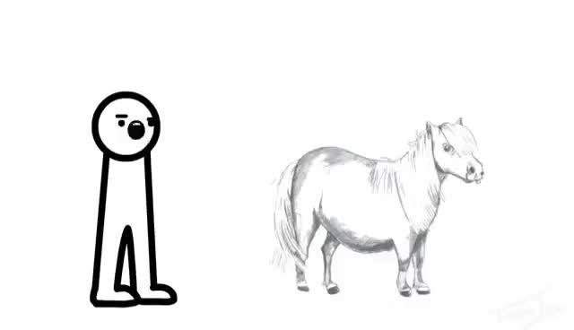 Watch I wonder if my pony can fly? GIF on Gfycat. Discover more asdfmovie, asdfmovie5, pony, tomska GIFs on Gfycat