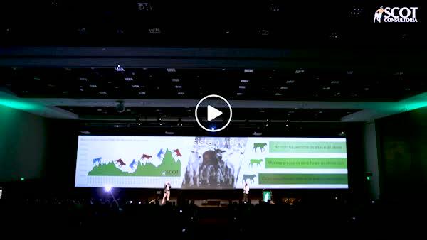 Watch and share 190313 News Video Bento Dias Encontro Scot GIFs on Gfycat