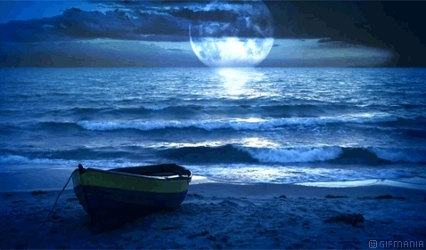 Barca Playa GIFs