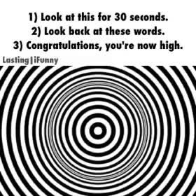 Watch and share Are You High?. You're High... Nothing Happened. GIFs on Gfycat