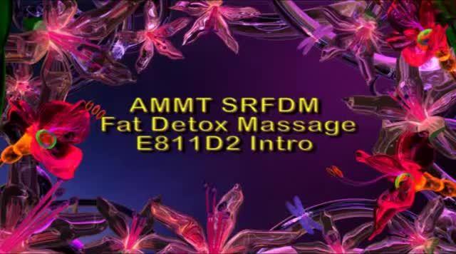 massage ammt