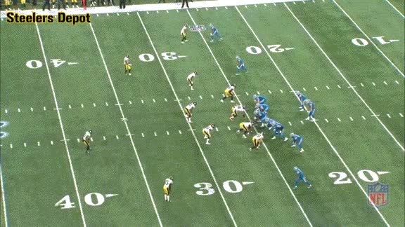 Watch and share Mitchell-lions-3 GIFs on Gfycat