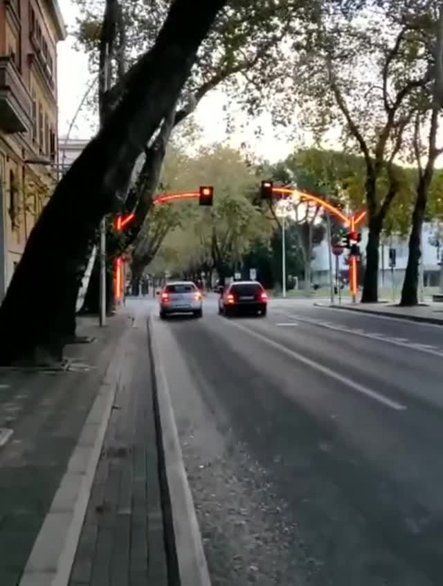 Watch and share Traffic Lights GIFs on Gfycat