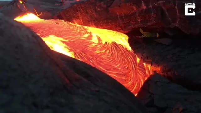Watch Stunning Footage Shows Lava Flow Up Close GIF by slimjones123 on Gfycat. Discover more catersnewsagency, viral, woahdude GIFs on Gfycat