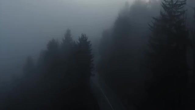 Watch Woods GIF on Gfycat. Discover more All Tags, Bigfoot, Mystery, Sasquatch, Scary, Unexplained, abandoned, analysis, creepy, gopro, mysterious, nukestop5, scariest, supernatural GIFs on Gfycat