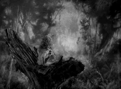 Watch King Kong (1933) GIF on Gfycat. Discover more dinosaur, fay wray, film, gif, gifset, king kong, king kong gif, my gif, t. rex, vintage GIFs on Gfycat