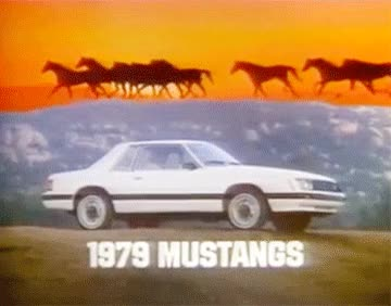 Watch and share Mustang GIFs on Gfycat