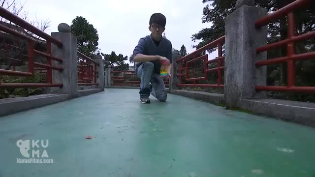 Watch and share Slinky!! GIFs on Gfycat