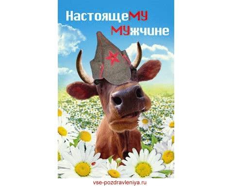 Watch and share Открытка Аннимированная С 23 Февраля! animated stickers on Gfycat