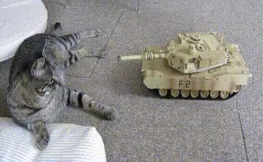 Watch and share Tank GIFs on Gfycat