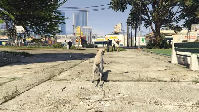 Watch and share Grand Theft Auto V GIFs and Gta Online GIFs by asponge on Gfycat