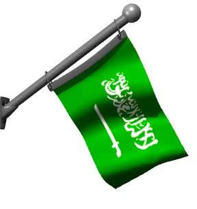 Watch and share 🇸🇦 — Saudi Arabia GIFs on Gfycat