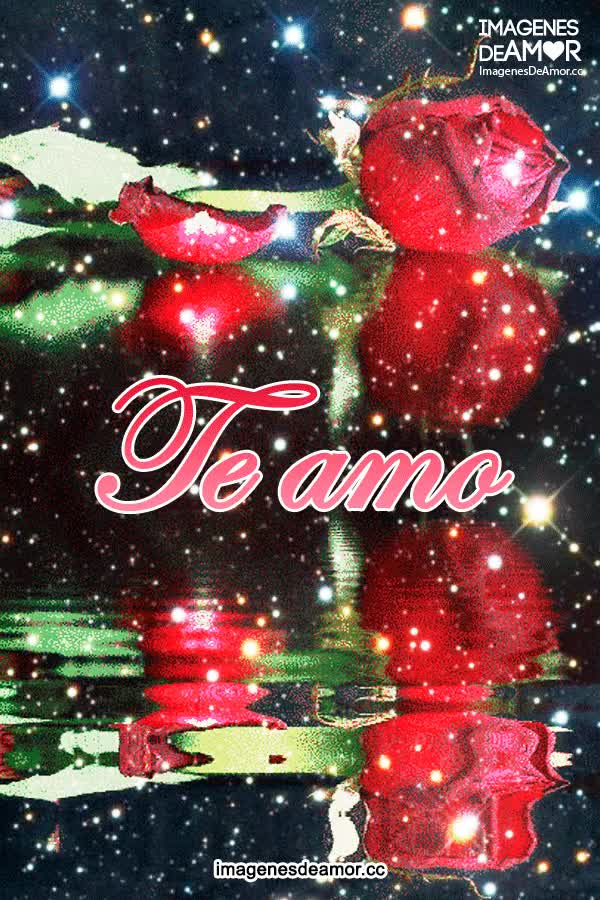 Watch and share Imagenes De Rosas Rojas GIFs on Gfycat