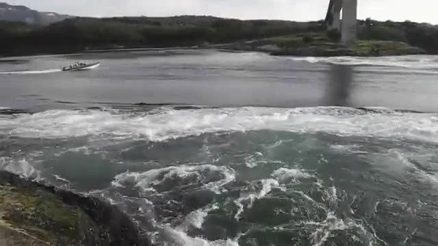 Watch Saltstraumen, Norway GIF by @lobo2me on Gfycat. Discover more related GIFs on Gfycat