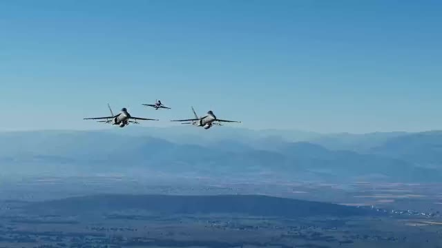 Watch and share Finnish Hornets On A CAP Mission NSFW GIFs by farrago on Gfycat