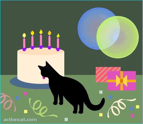 Watch and share Belated Birthday Greetings, BlackCat! GIFs on Gfycat