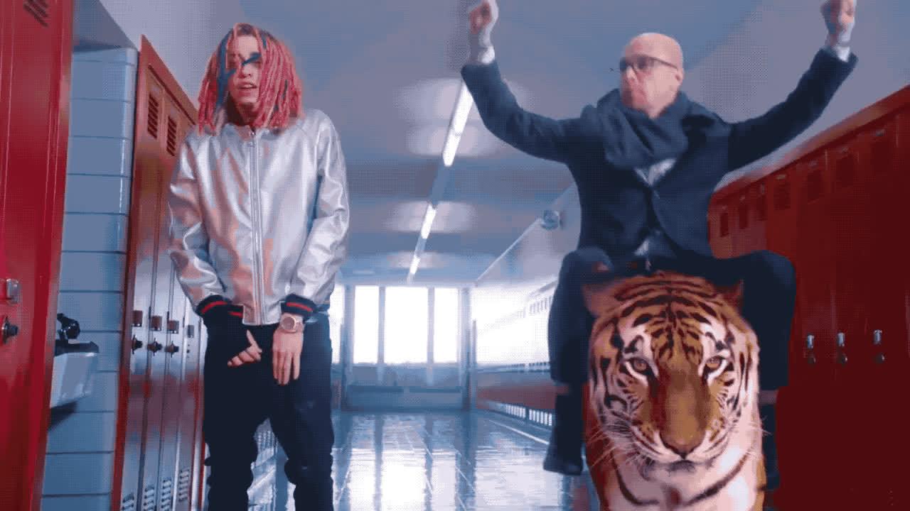 dance, gang, hip, hop, live, night, rap, rapper, saturday, snl, tiger, tucci, yo, Tucci gang - snl GIFs