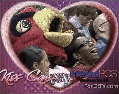 Most Hilarious Kiss Cam Goofs Ever GIFs