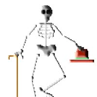 Watch and share Skeleton animated stickers on Gfycat