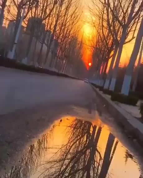 Watch and share A Very Satisfying Reflection GIFs by Gif-vif.com on Gfycat