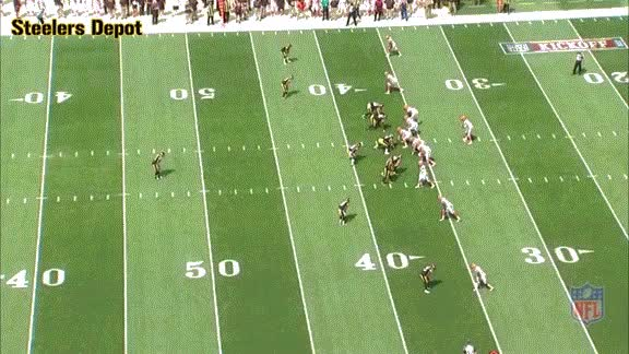 Watch and share Hilton-browns-2 GIFs on Gfycat