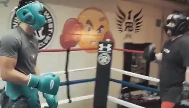 Streamers Try: Boxing ft. Scarra, Pokimane, LilyPichu, Pokelawls & BasedYoona