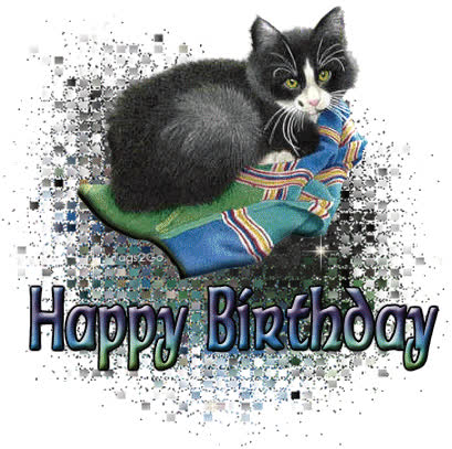 Image result for Happy Birthday black cats