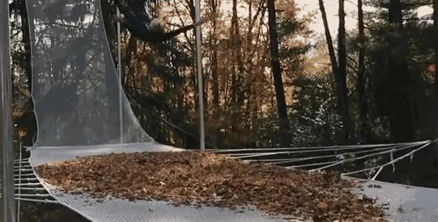 Watch and share Trampoline GIFs and Autumn GIFs by Vinegret on Gfycat