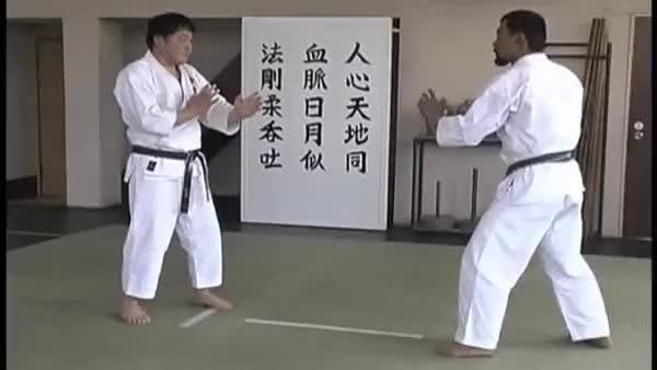 Watch and share Cutting Lines Example - Shidokai Goju-Ryu GIFs on Gfycat
