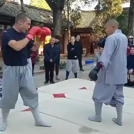 Watch and share Shaolin Wins GIFs on Gfycat