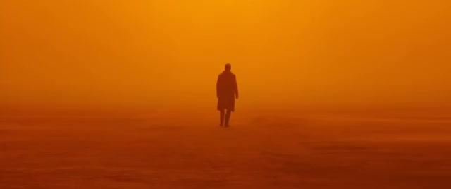 Watch and share Blade Runner 2049 GIFs and Cinemagraph GIFs by danielcai on Gfycat