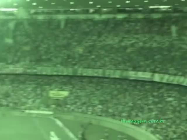 Watch and share Brasileirao GIFs and Fluminense GIFs on Gfycat