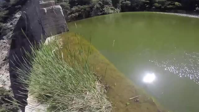 Watch and share Matilija Dam GIFs and Jumping GIFs on Gfycat
