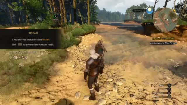 Watch this GIF by @taviusmaximus on Gfycat. Discover more gaming, thewitcher3 GIFs on Gfycat