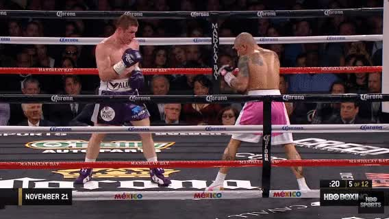 Watch Canelo 6 GIF on Gfycat. Discover more related GIFs on Gfycat