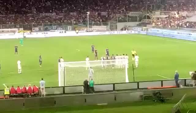 Watch alonso gol GIF on Gfycat. Discover more fiorentina GIFs on Gfycat