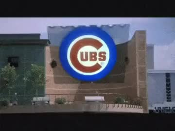 Watch and share Guys, I Think We Should Put Money On The Cubs. GIFs on Gfycat