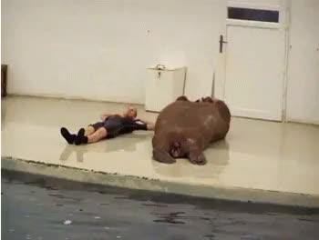 Slimming down for that summer bod (reddit)