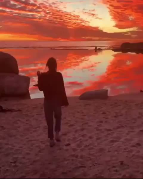 Watch and share Nature GIFs and Sunset GIFs by GIFs For Everything on Gfycat