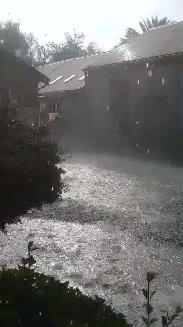 Watch and share Hail GIFs by peterm on Gfycat