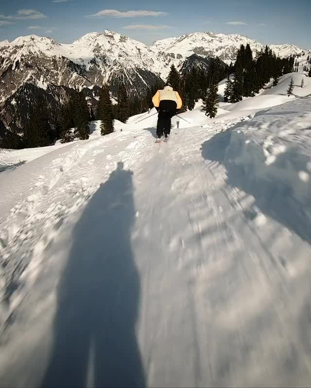 Watch and share Skiing GIFs by Newschoolers on Gfycat