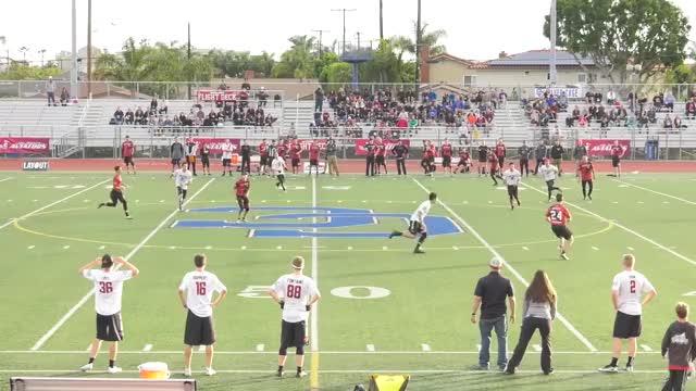 Watch Tim Beatty 60-Yard Hammer Assist GIF by American Ultimate Disc League (@audl) on Gfycat. Discover more Sports, TheAUDLChannel GIFs on Gfycat