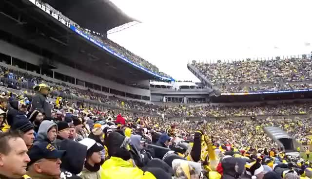 Watch and share Steelers GIFs on Gfycat