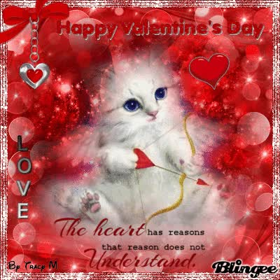 Watch and share Valentines Kitty GIFs on Gfycat