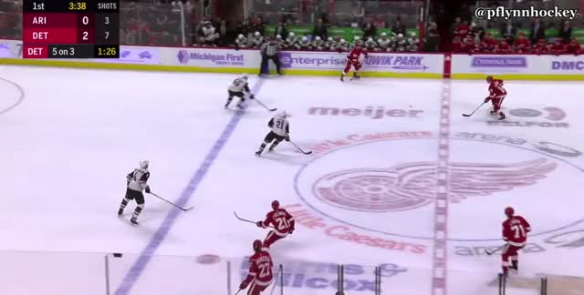 Watch and share Detroit Red Wings GIFs and Arizona Coyotes GIFs by peterwiim on Gfycat